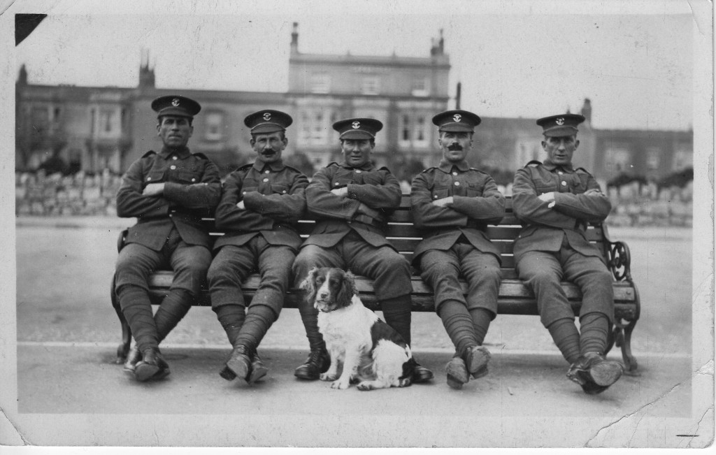 "THORNE, Frederick, THORNE, RA (""Rock"") all Bristol taxi co, all reservists 1914-19 war, photo taken October 1914"